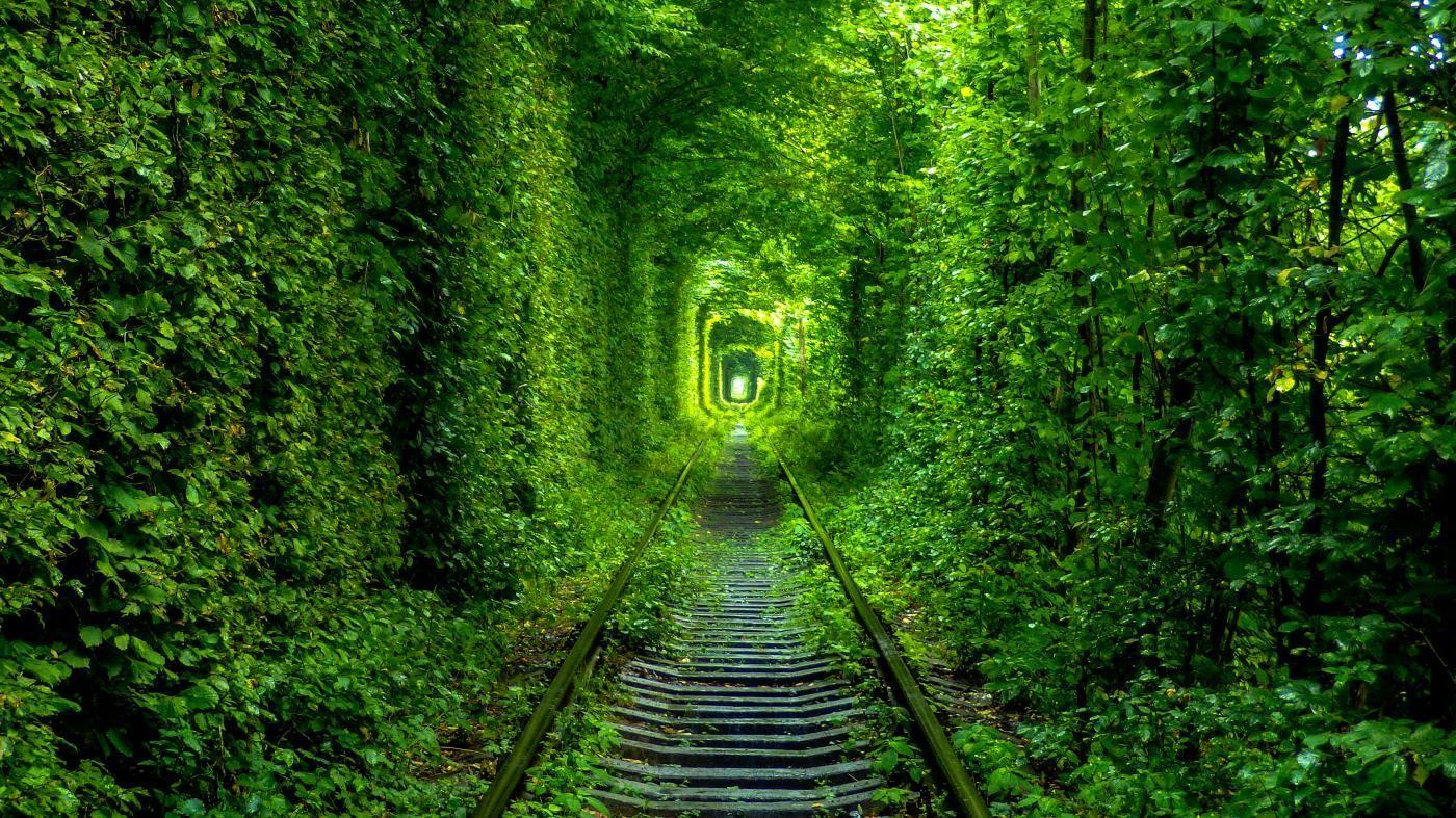 Тунель кохання на Волині: місця щасливих людей