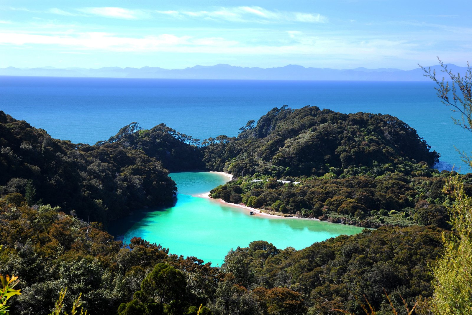Тасмания - перлина Австралії