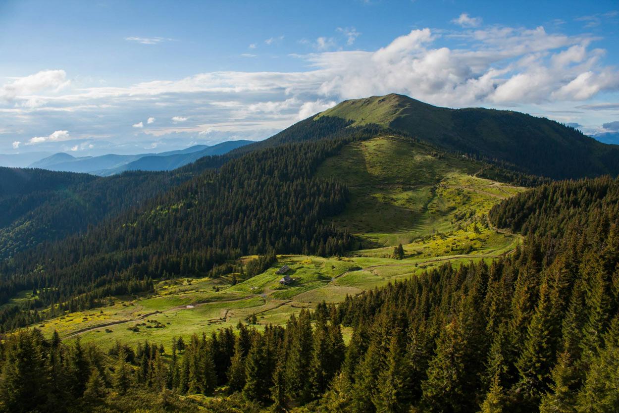 Вирушаємо у гастрономічну подорож: кращі сироварні Закарпаття